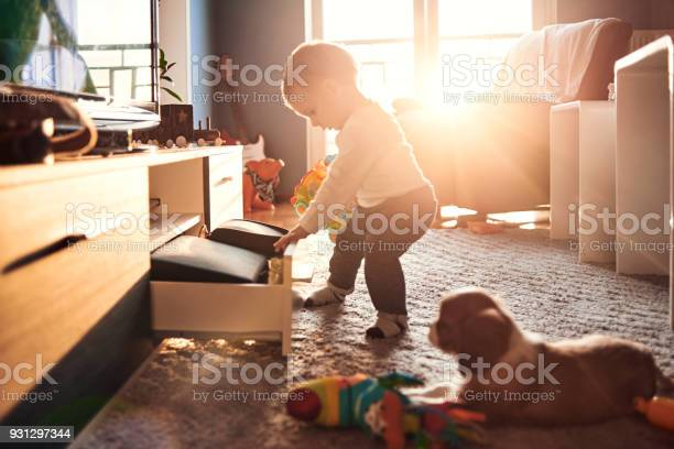 Baby and his dog playing around the house picture id931297344?b=1&k=6&m=931297344&s=612x612&h=8y7r 8jk3sqyvtijmnwhyymk1psayhrafq528j6xtza=