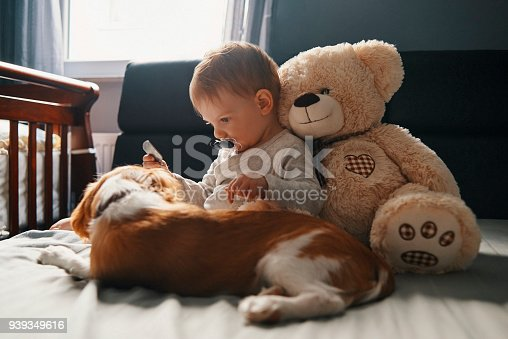 istock baby and his little crew 939349616