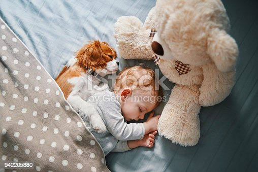 942206906 istock photo baby and his puppy sleeping peacefully 942205880