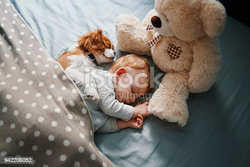 942206906 istock photo baby and his puppy sleeping peacefully 942206052