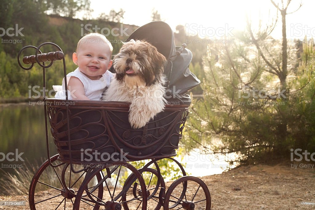 Baby and little puppy in apram stock photo