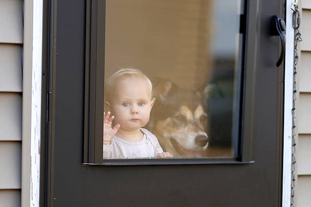 Baby and Pet Dog Waiting at Door Looking out Window stock photo