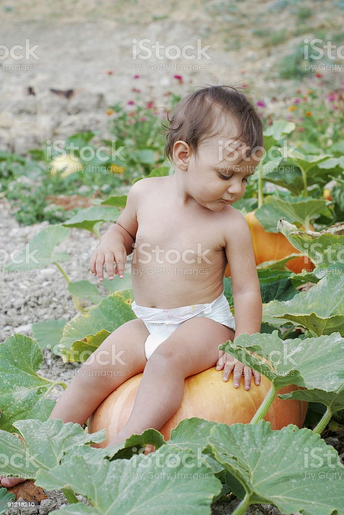 Baby and pumpkin royalty-free stock photo
