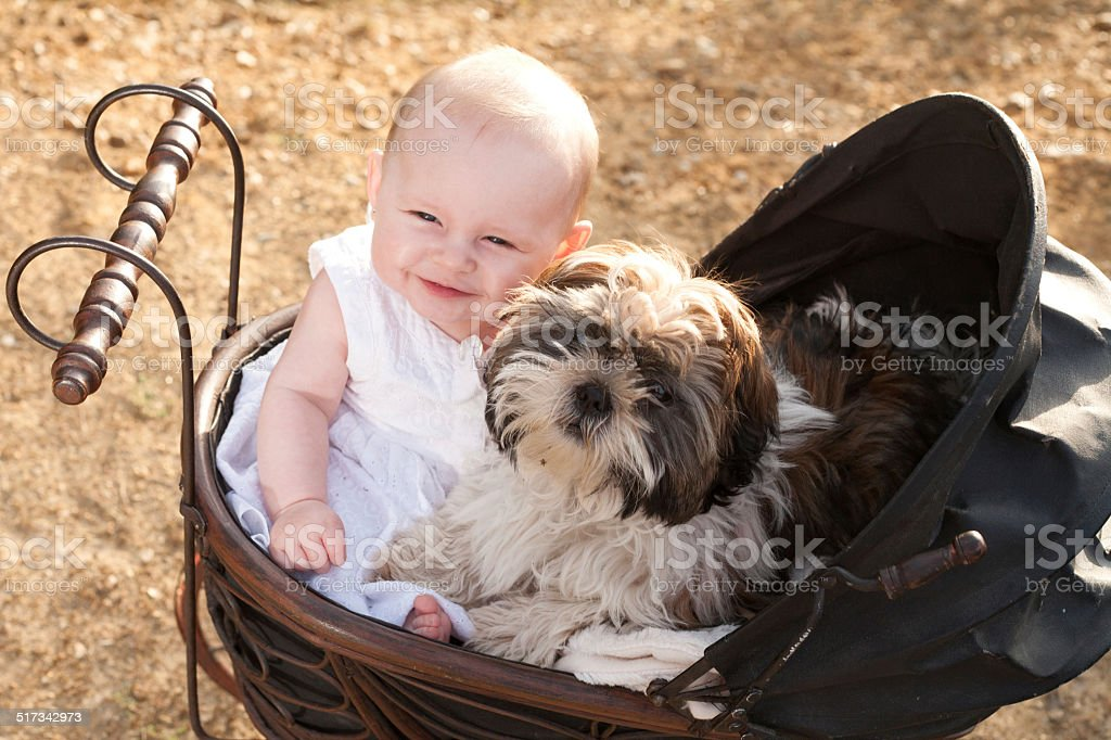 Baby and puppy in vintage pram stock photo
