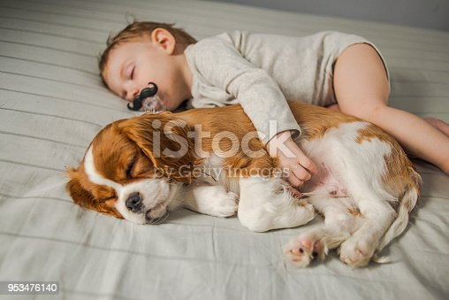 942206906 istock photo baby and puppy taking a power nap 953476140