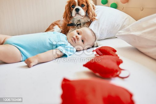 942206906 istock photo baby and the dog relaxing at home 1006750498