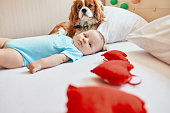 istock baby and the dog relaxing at home 1006750498