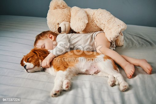 942206906 istock photo baby and the puppy enjoying their nap together 947237224