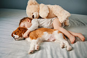 istock baby and the puppy enjoying their nap together 947237224