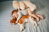 istock baby and the puppy enjoying their nap together 947237340