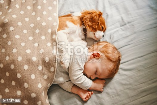 942206906 istock photo baby and the puppy enjoying their nap together 947237486
