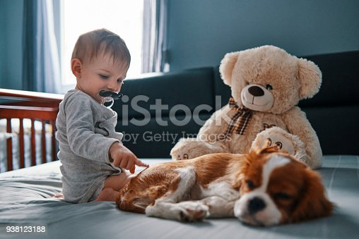 istock baby and the puppy 938123188