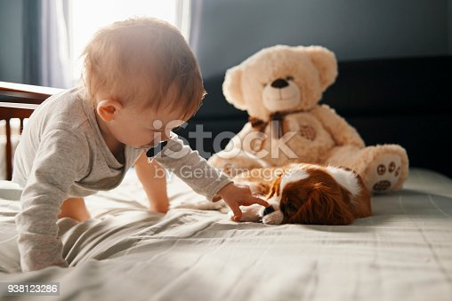 istock baby and the puppy 938123286