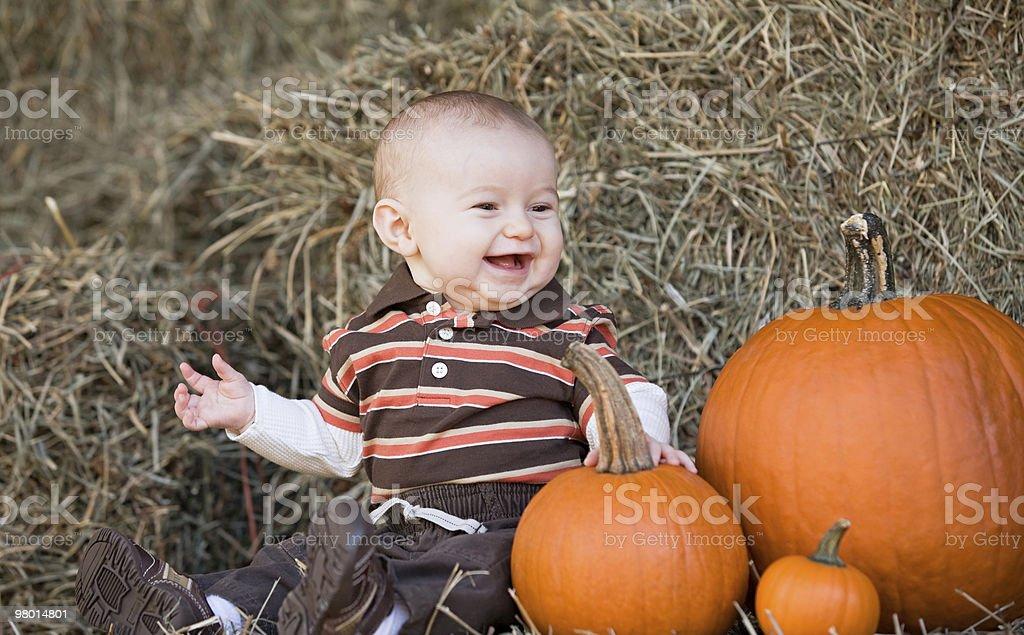 Baby at Thanksgiving royalty-free stock photo