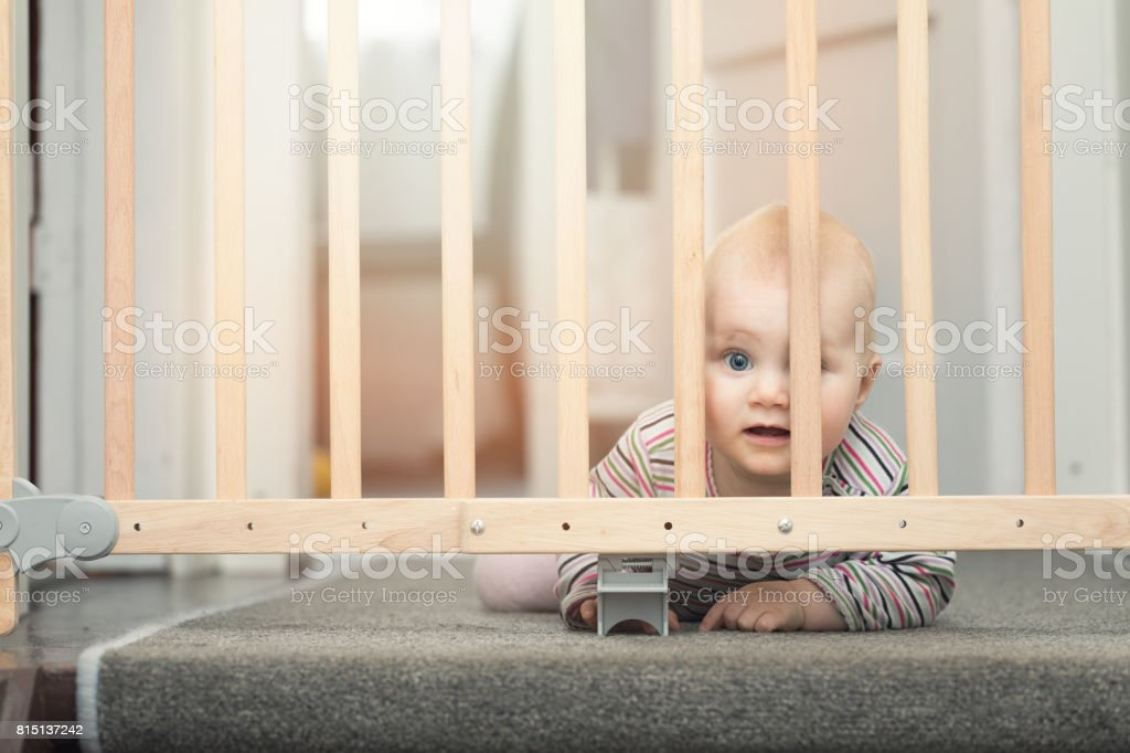 baby behind safety gates in front of stairs at home stock photo