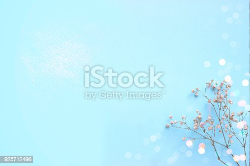 istock Baby blue background with small white flowers and bokeh, with copy space 925712496
