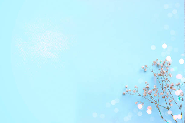 Baby blue background with small white flowers and bokeh with copy picture id925712496?b=1&k=6&m=925712496&s=612x612&w=0&h=ng2pgkk1nxlb0z7fzr674fcla9y36uaghouhbxw80b8=