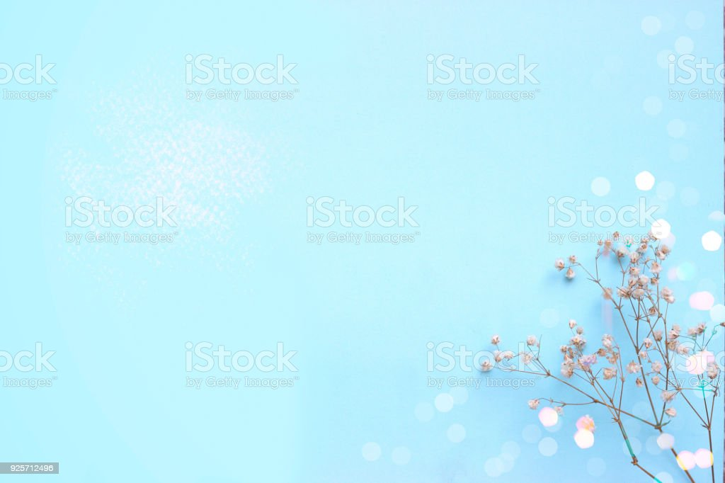 Baby blue background with small white flowers and bokeh, with copy space stock photo