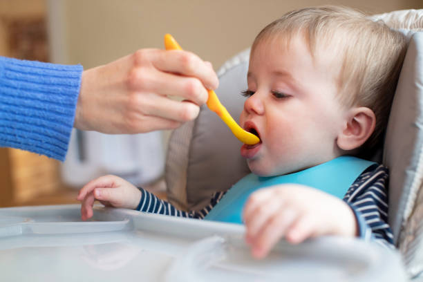 Baby Boy At Home In High Chair Being Fed Solid Food By Mother With Spoon stock photo