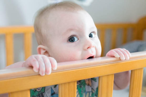 Baby boy chewing in his Crib stock photo
