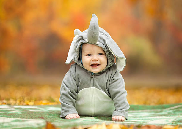 Baby boy dressed in elephant costume outdoors stock photo