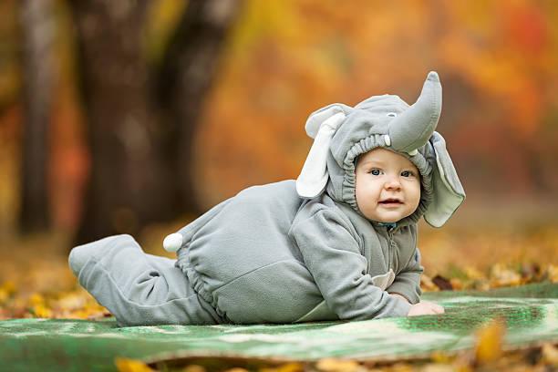 Baby boy dressed in elephant costume stock photo