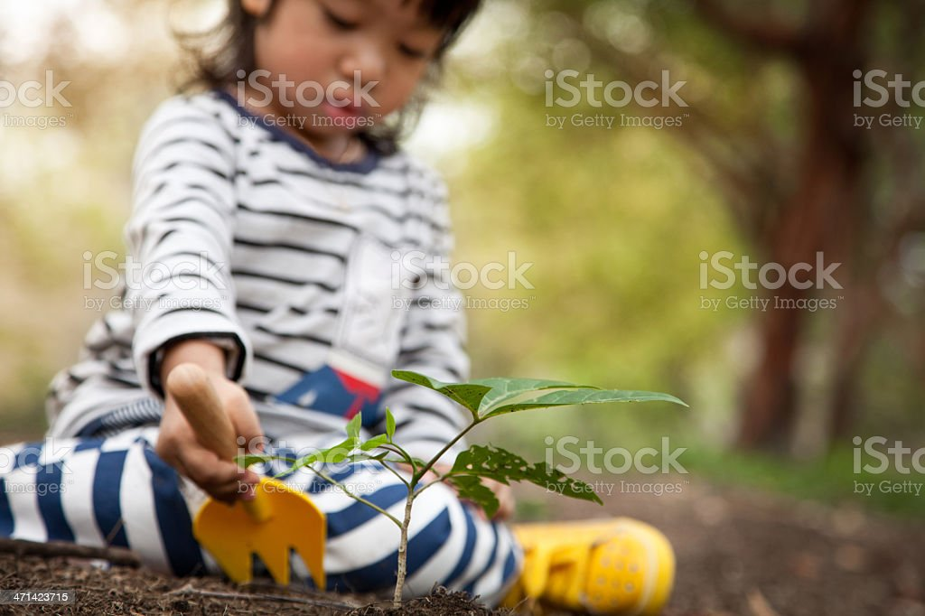 Baby boy gardening stock photo