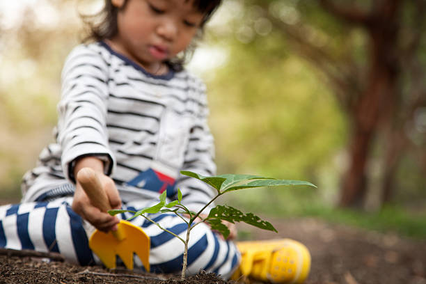 Baby boy gardening stock photo