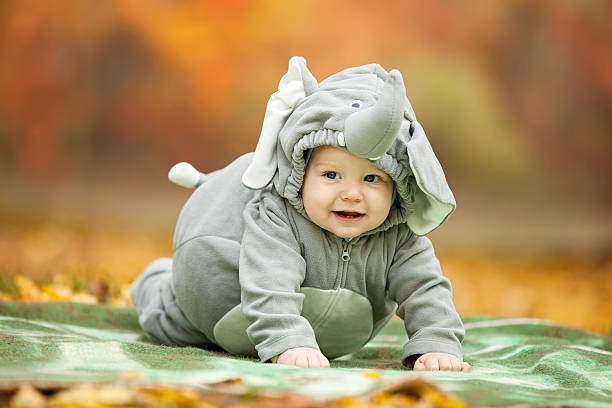 A baby boy in an elephant costume in autumn foliage stock photo