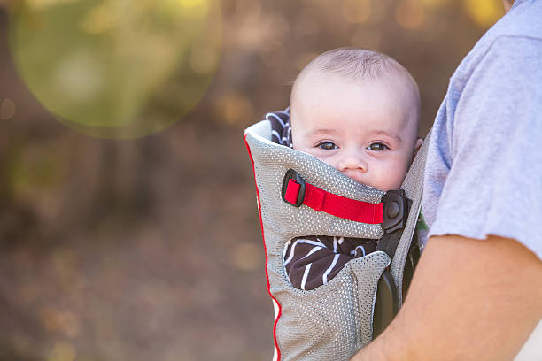 Baby Boy Looking At Camera From Baby Carrier stock photo