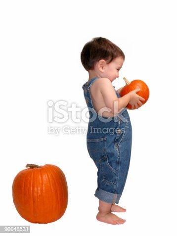 istock Baby Boy Picking Pumpkins 96648531