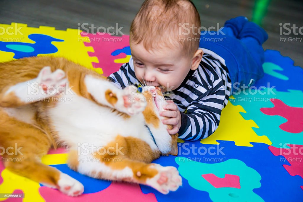 Baby boy - Royalty-free Animal Stock Photo