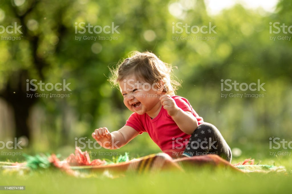 Baby boy playing in the grass Cute baby playing on the grass Agricultural Field Stock Photo