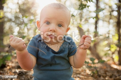 Caucasian baby boy playing in the leaves and pine needles in the woods on an autumn day. Backlit and baby looking at camera.