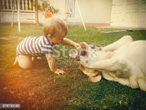 Cute baby boy is playing with his dog in the backyard. Candid moment, retro toned, grain and vignette applied.