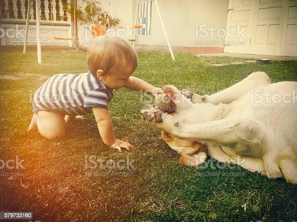 Baby boy playing with his dog in retro tones picture id579733160?b=1&k=6&m=579733160&s=612x612&h=apzar 9asvldvm7xft3qmnxz08dlgnoi zmh1 snkfm=