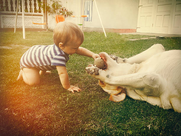Baby boy playing with his dog in retro tones - foto de stock