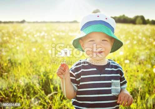 istock Baby boy sitting in grass on the fieald with dandelions 660454408