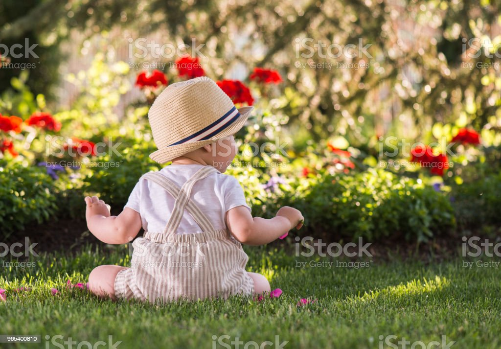 Baby boy sitting on the grass  watching flowers in the garden on beautiful spring day zbiór zdjęć royalty-free