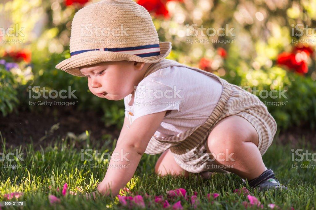 小男孩坐在草地上, 看著美麗的春天在花園裡的花朵 - 免版稅人圖庫照片