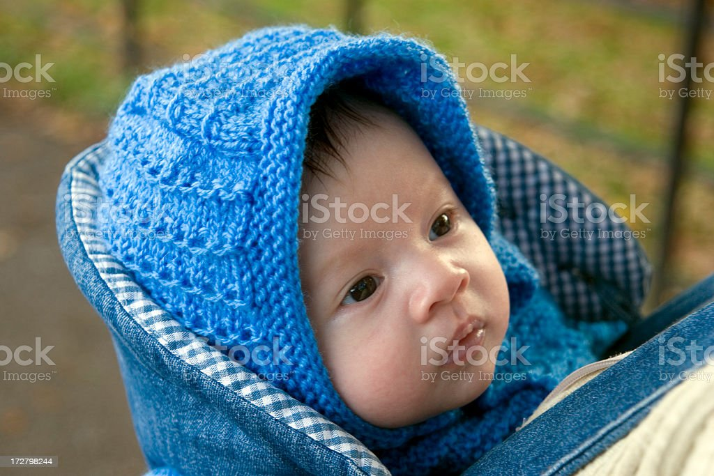 Baby boy wearing a blue hat in a papoose royalty-free stock photo