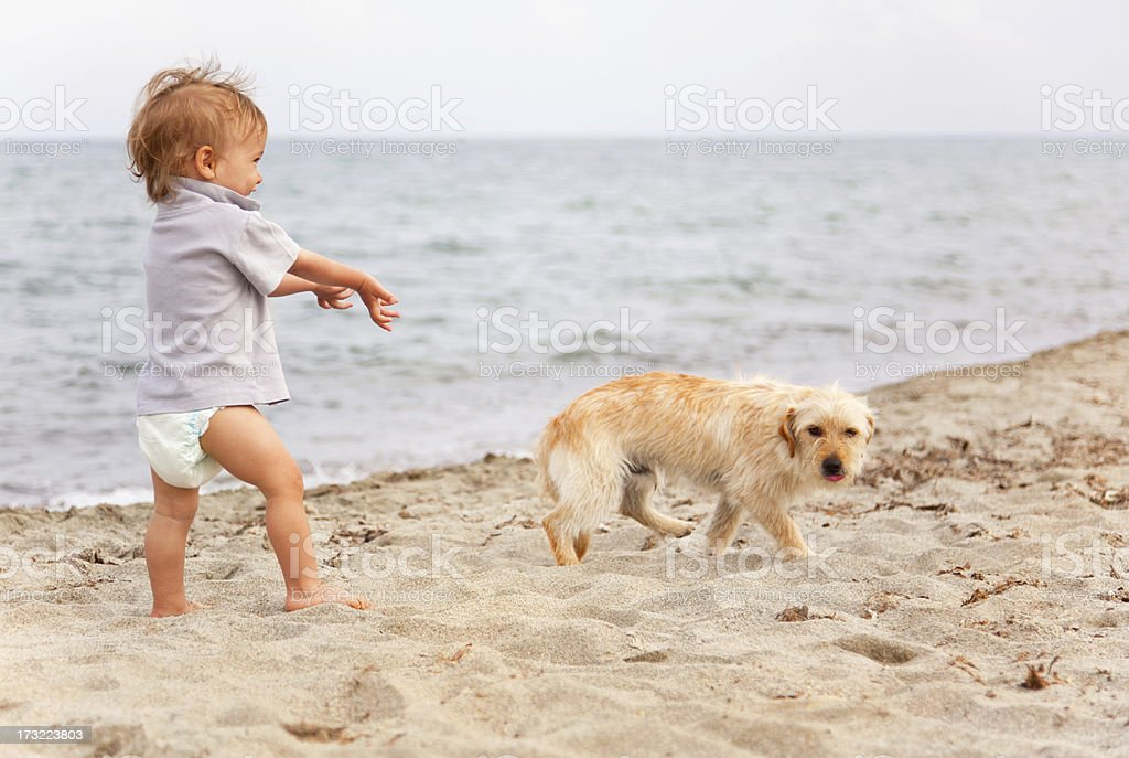 Baby boy with dog royalty-free stock photo