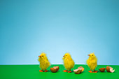 Three baby chicks have just hatched out of their shells and are waddling in a row on a green field.