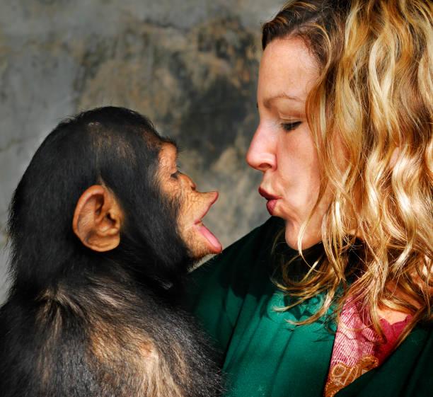 Baby chimp and handler picture id108225928?b=1&k=6&m=108225928&s=612x612&w=0&h=23jnqgpuvktfdfyx3jydptp2eset7hpd3ytvravh9qu=