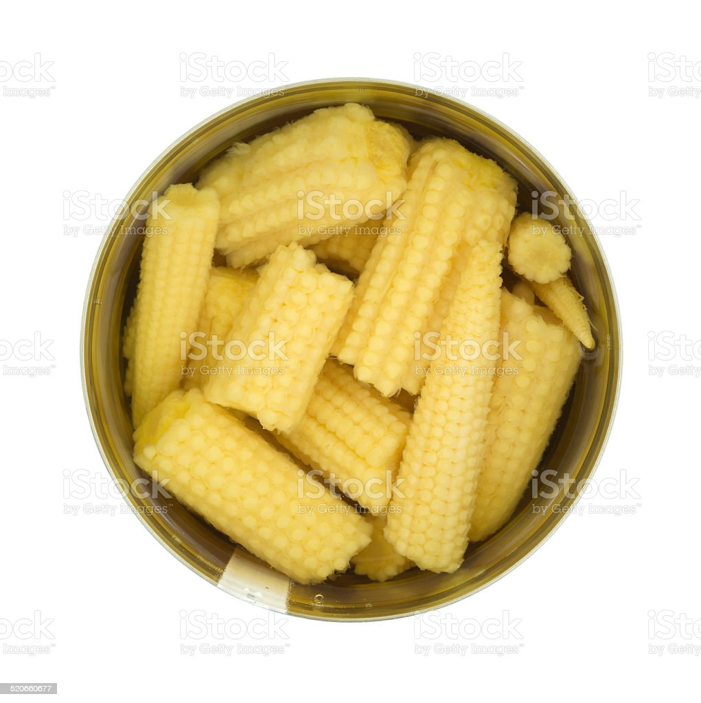 Baby corn nuggets in opened can stock photo