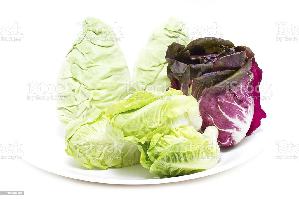 Baby Cos, Radicchio and White Cabbage. royalty-free stock photo
