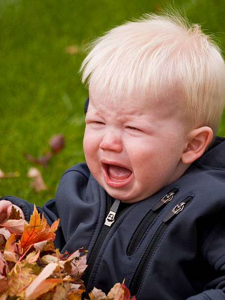 Baby crying in a pile of leaves stock photo