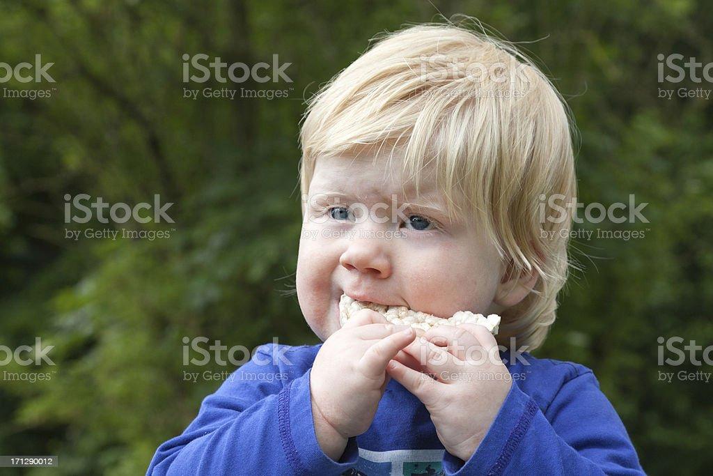 baby eating a rice cracker stock photo