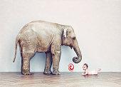baby elephant and human baby
