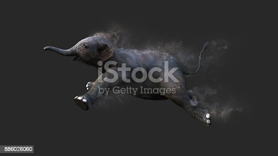 istock Baby Elephant Moving and Jumping 886026060